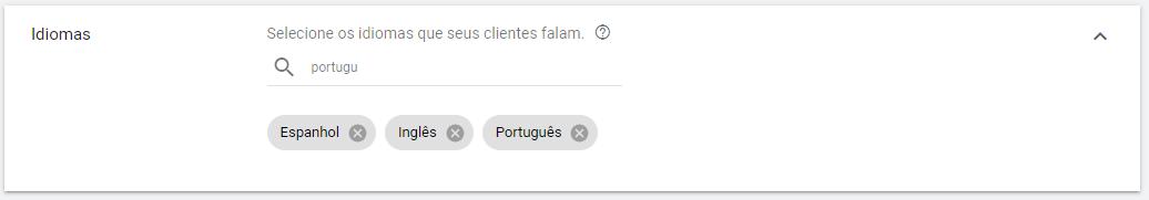 qual idioma escolher no google ads